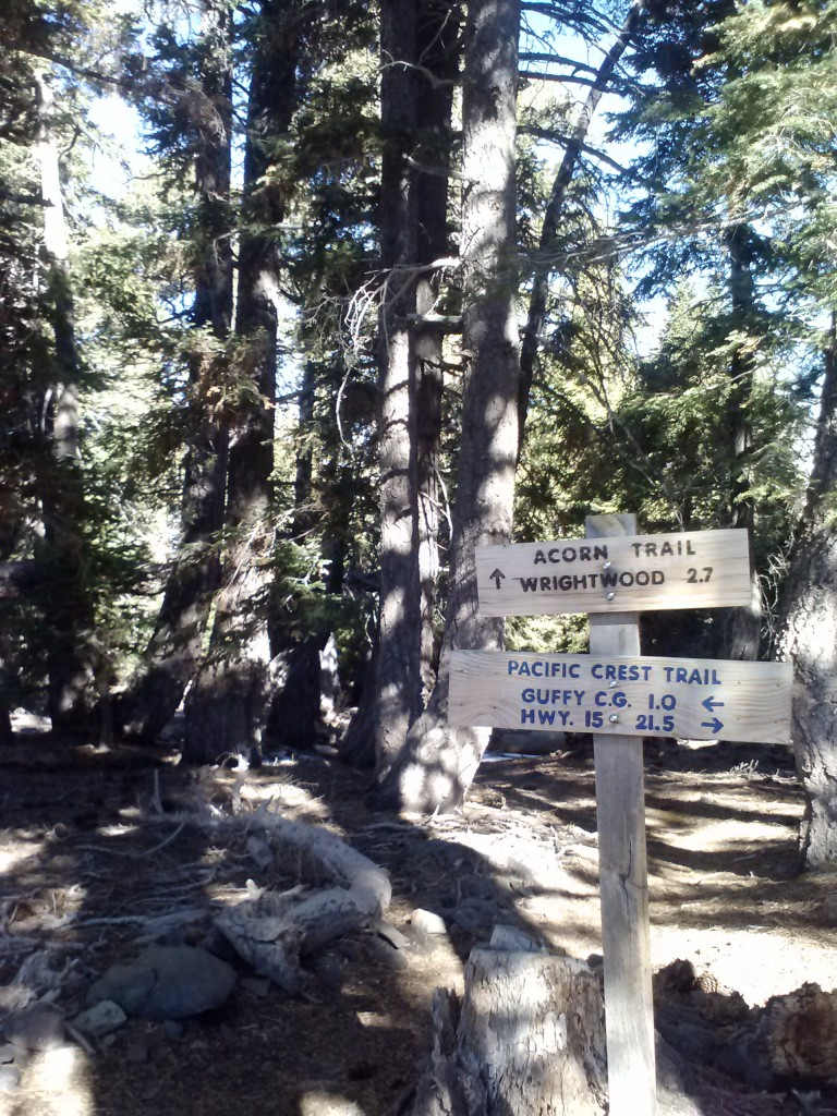 Junction of PCT and Acorn Trail