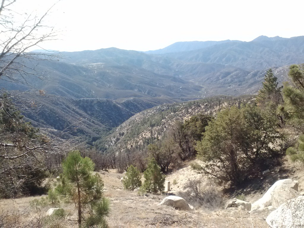 Angeles National Forest, looking south