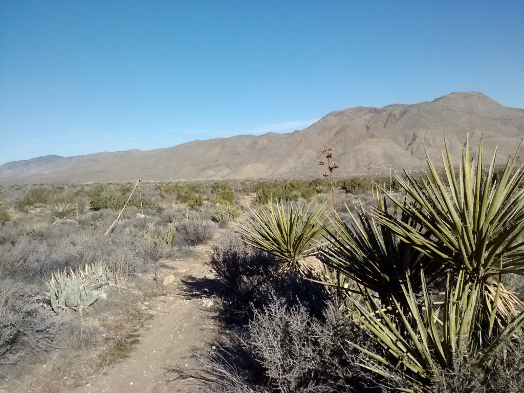 pct-section-a-anza-borrego-desert-15