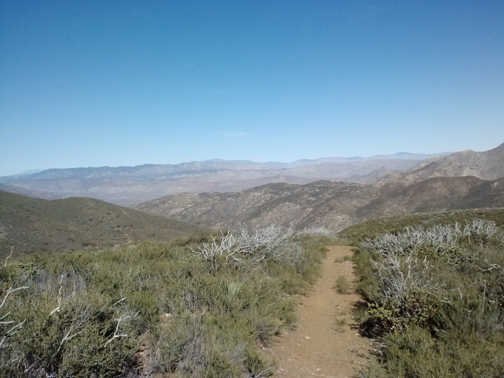 pct-section-a-mount-laguna-mountains-23