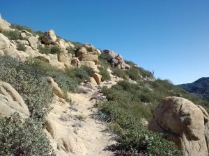 pct-section-b-anza-borrego-desert-20