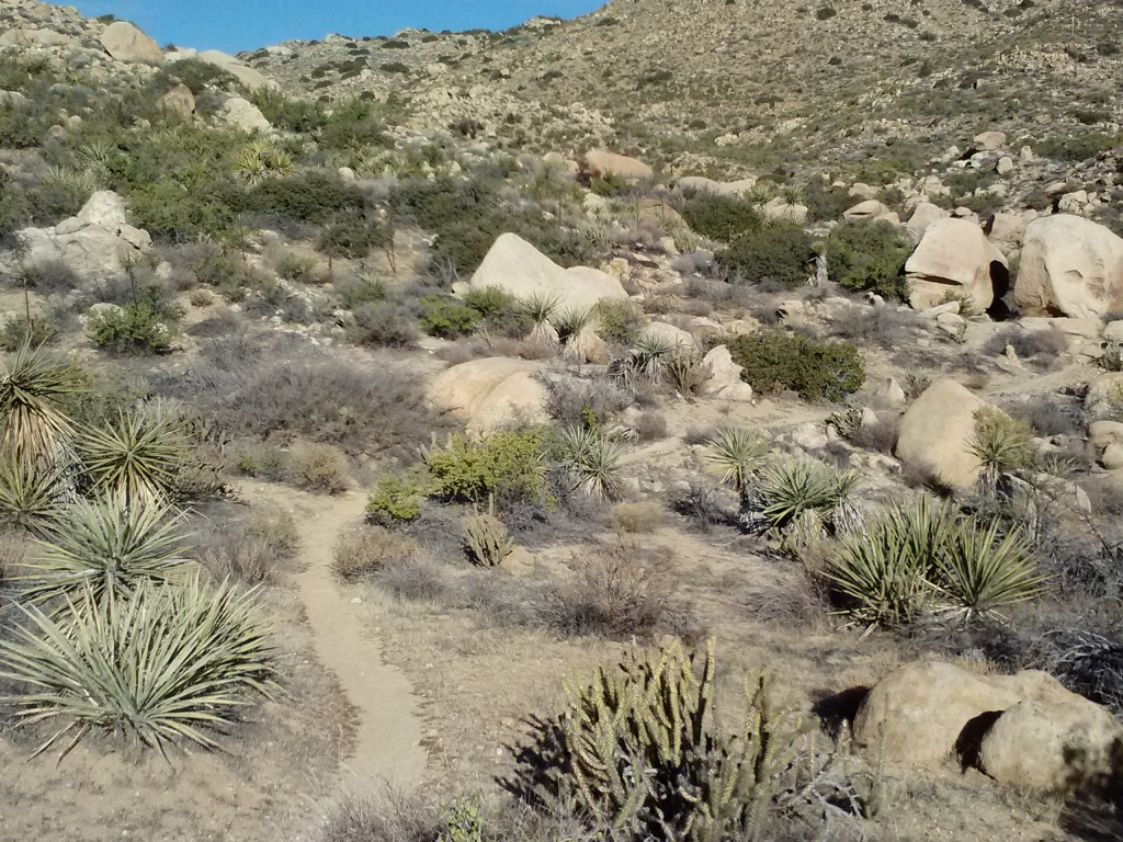pct-section-b-anza-borrego-desert-41