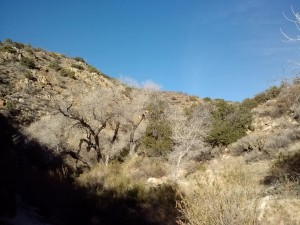 Nance Canyon
