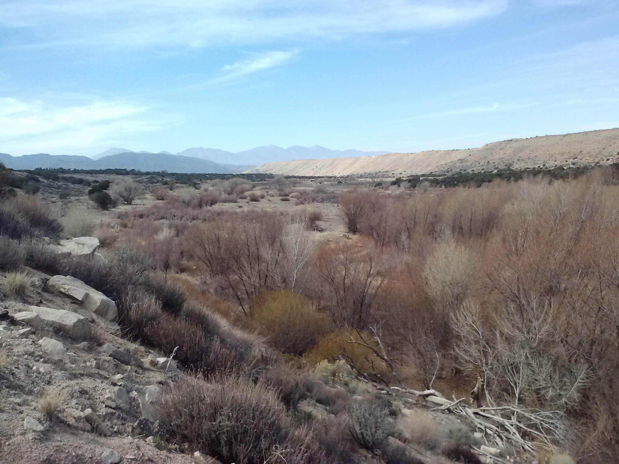 Mojave Forks, looking toward Mt. Baldy