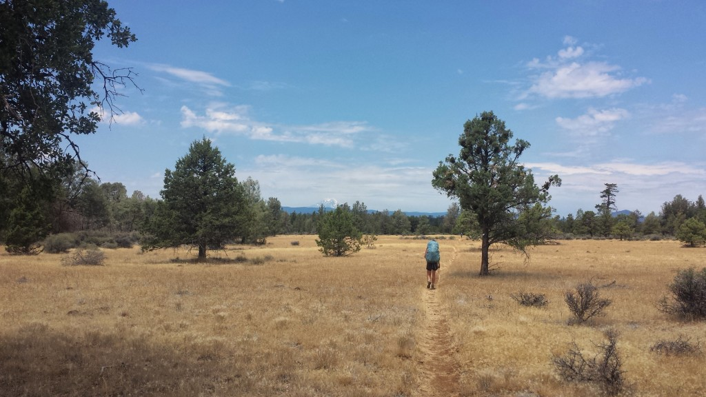 PCT Section N Lassen National Forest
