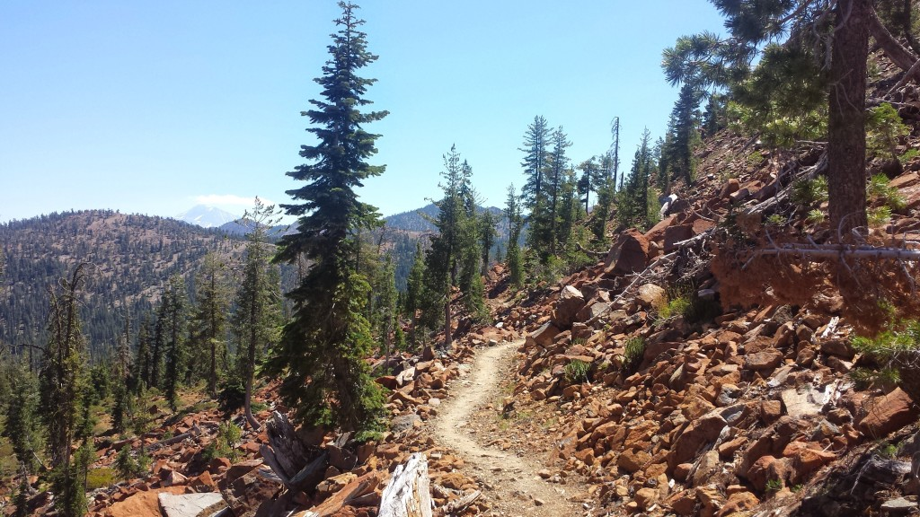 PCT Section P Shasta Trinity National Forest Scott Mountains