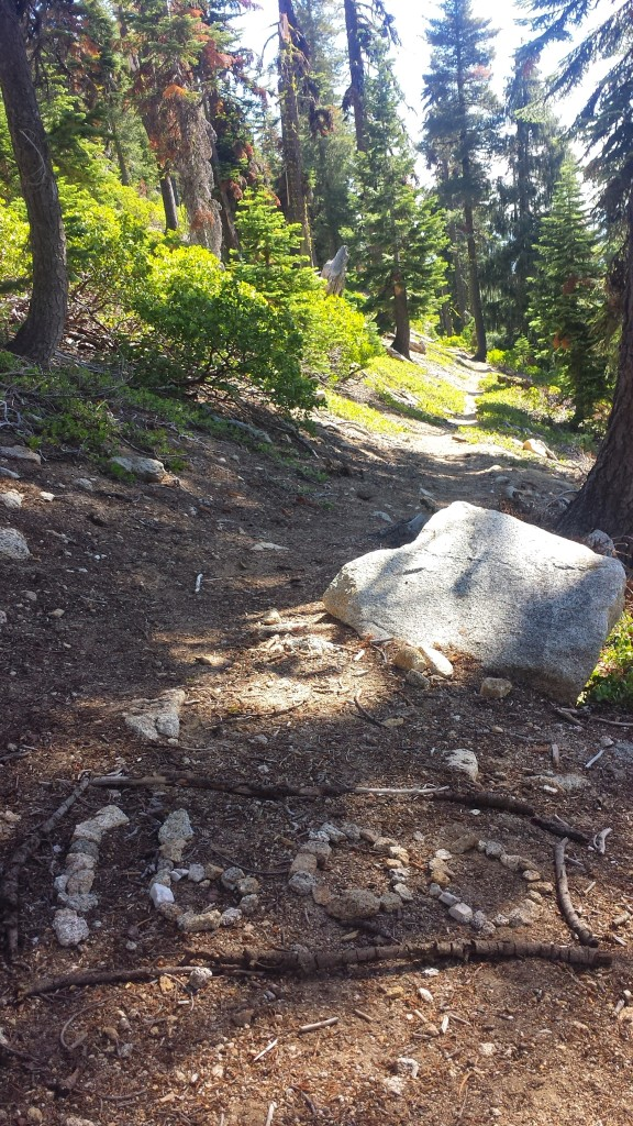 PCT Section P Shasta Trinity National Forest Scott Mountains 1600 mile marker