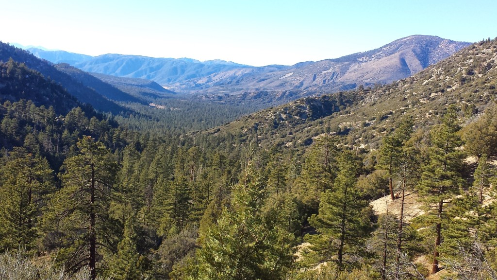 PCT Section C San Bernardino National Forest