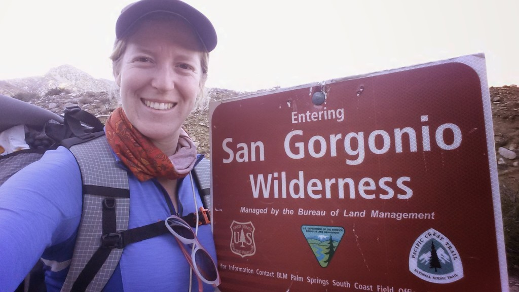 PCT Section C San Gorgonio Wilderness