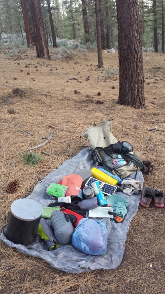 PCT Section F Piute Mountains Landers Camp