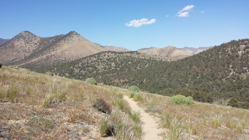 PCT Section F Sequoia National Forest Walker Pass
