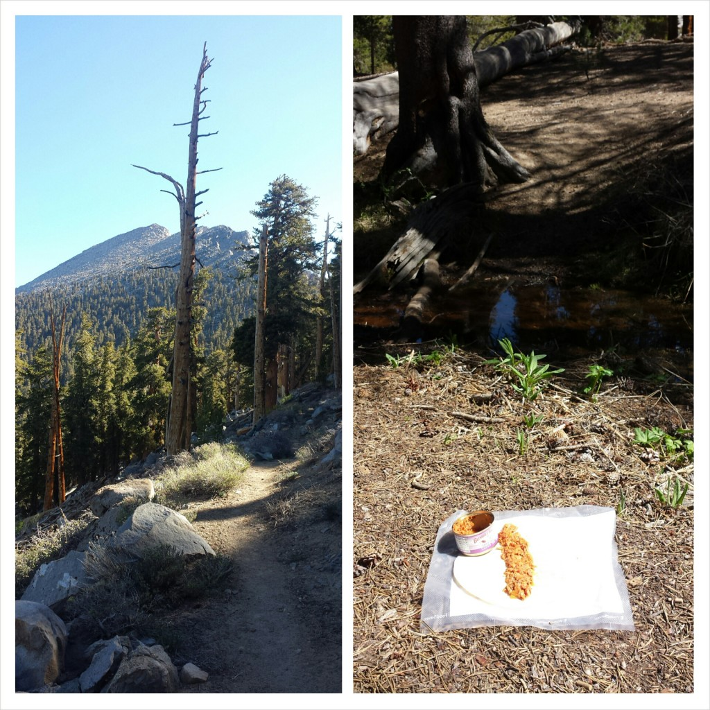 PCT Section G Sequoia National Forest trail food tuna lunch