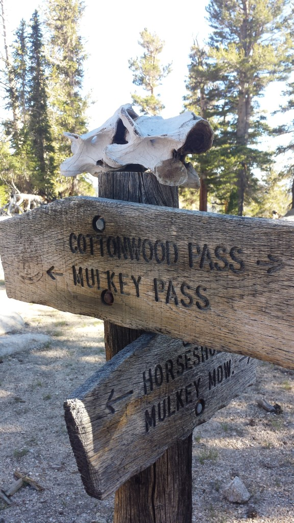 PCT Section G Sequoia National Forest trail pass mulkey junction