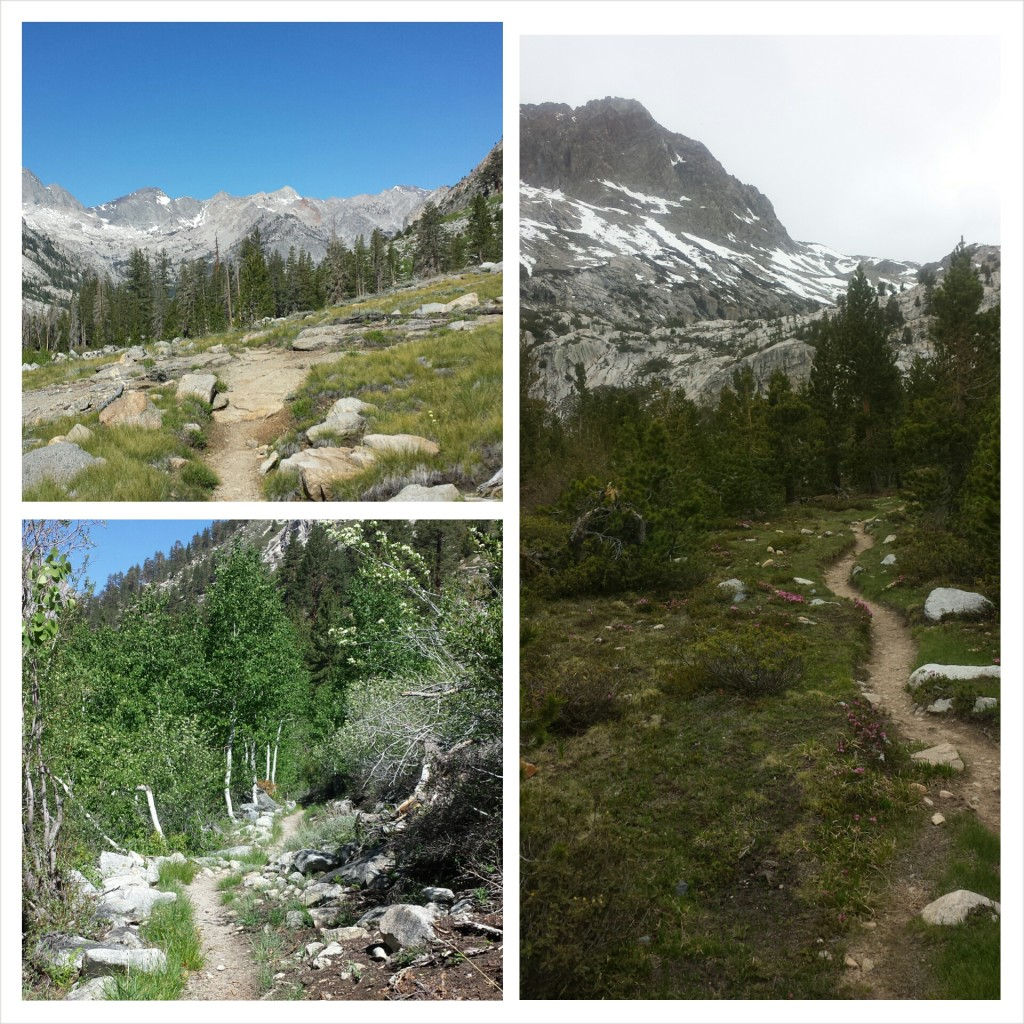 PCT Section H Kings Canyon National Park