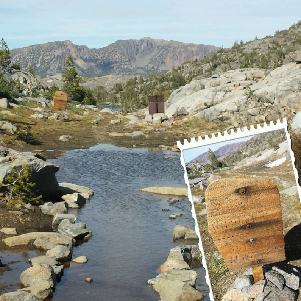 PCT Section I Toiyabe National Forest Hoover Wilderness