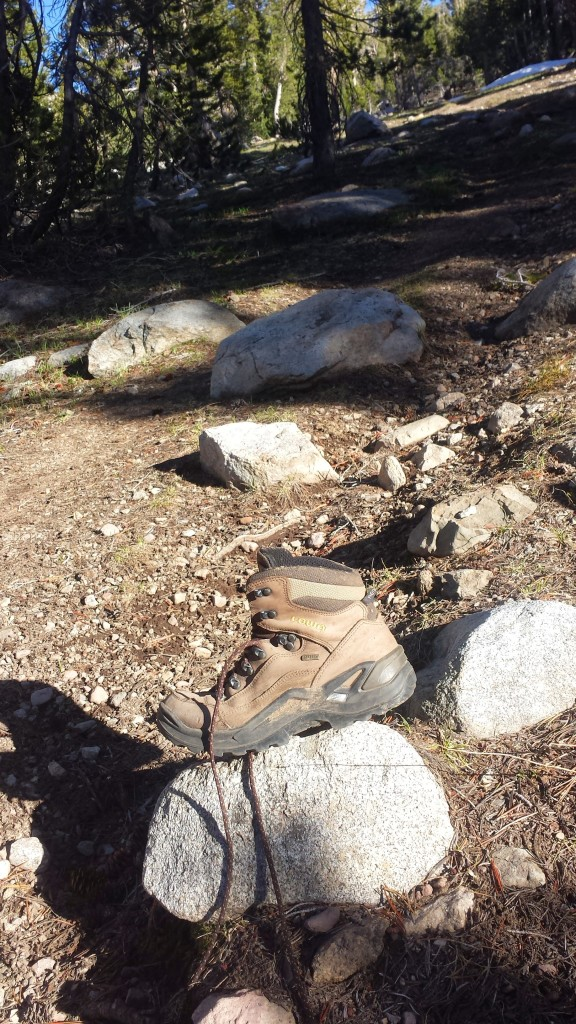 PCT Section J Toiyabe National Forest Carson Iceberg Wilderness boot