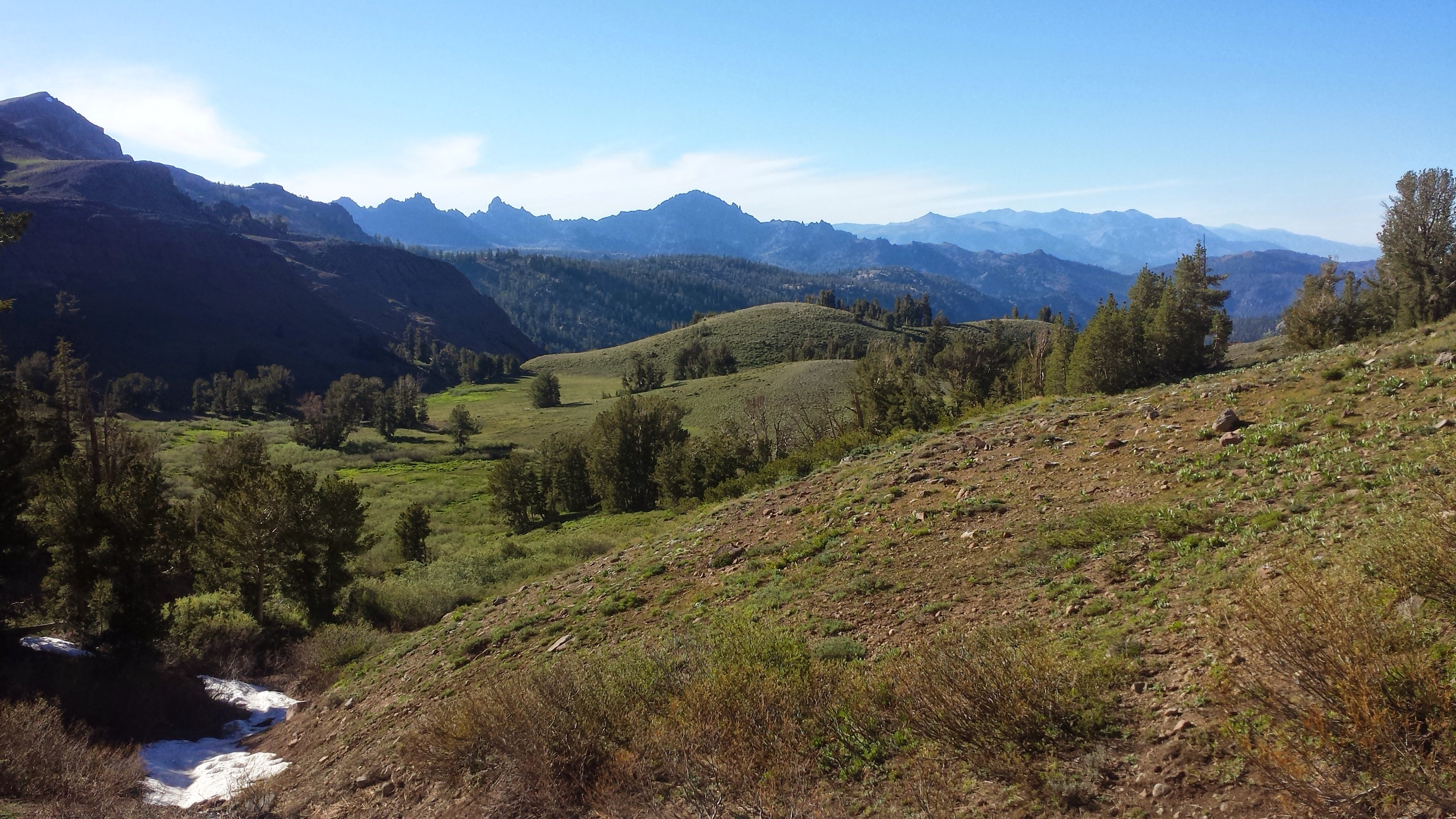 PCT Section J Toiyabe National Forest Carson Iceberg Wilderness