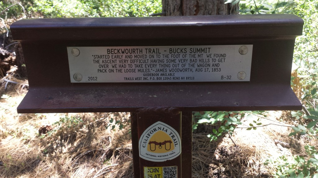 PCT Section M Plumas National Forest Bentworth Trail Bucks Summit