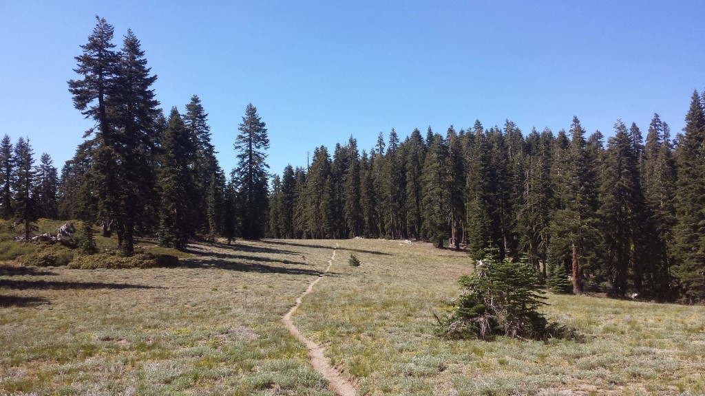 PCT Section M Plumas National Forest Bucks Wilderness