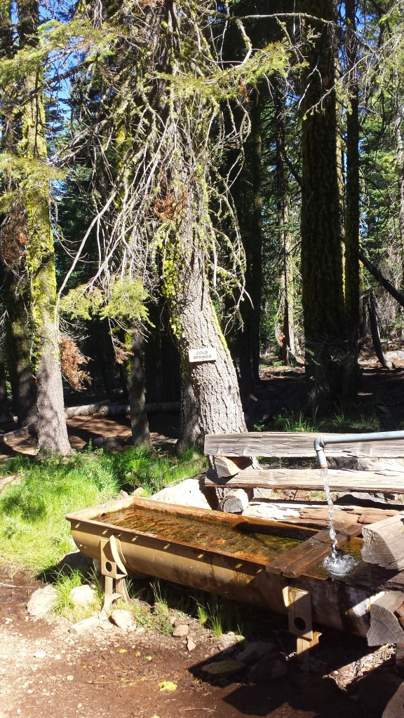 PCT Section N Lassen National Forest Cold Springs Trough