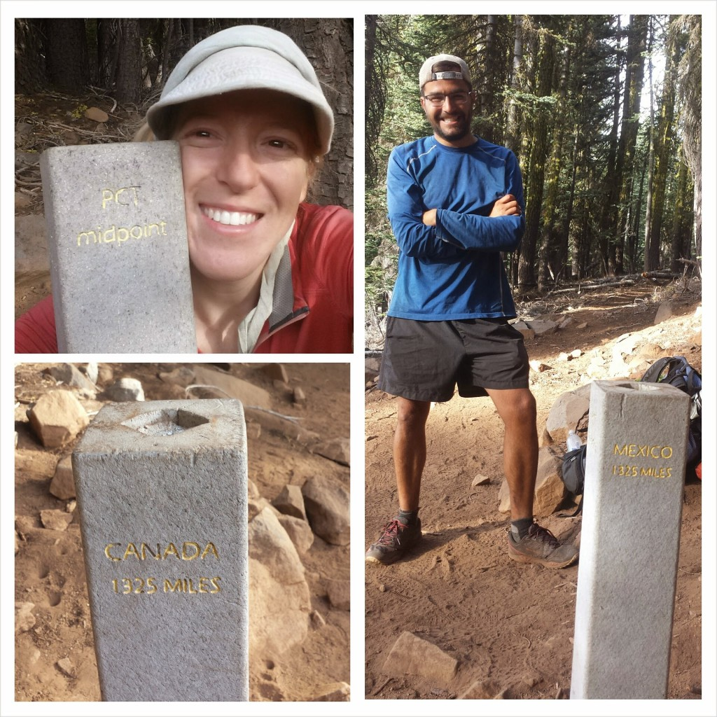 PCT Section N Lassen National Forest midpoint monument Glitter
