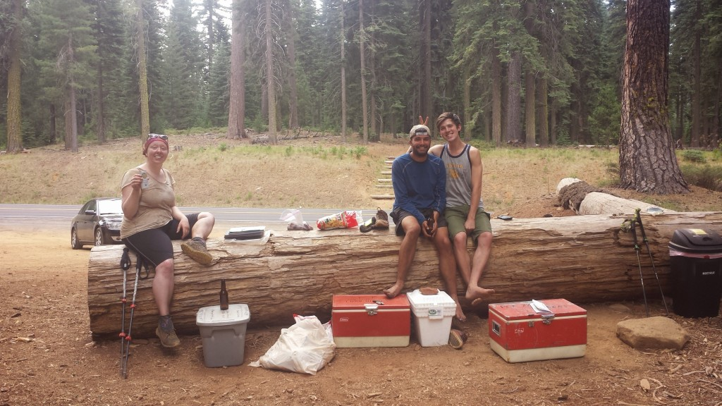 PCT Section N Lassen National Forest Highway 36 Glitter Strawberry hikers trail magic