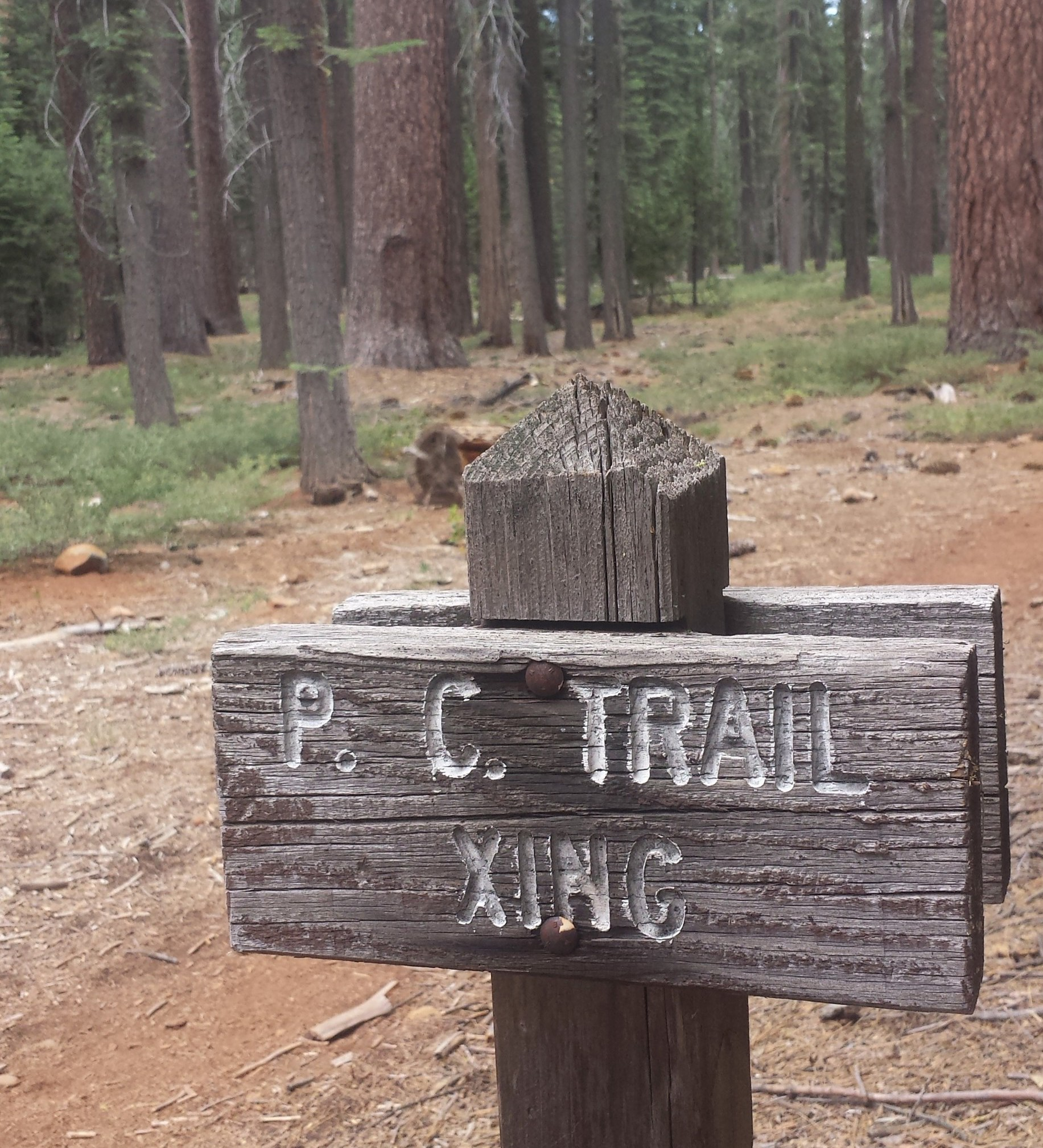 PCT Section N Lassen National Forest Highway 36