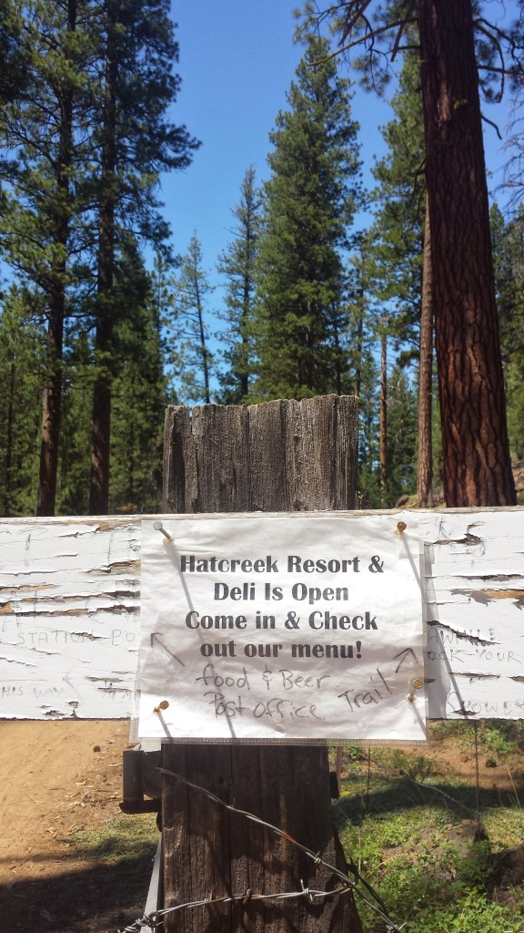 PCT Section N Lassen National Forest Hatcreek Resort Old Station