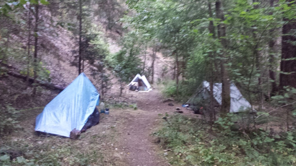 PCT Section O Shasta Trinity National Forest McCloud River Fitzhugh Gulch Creek