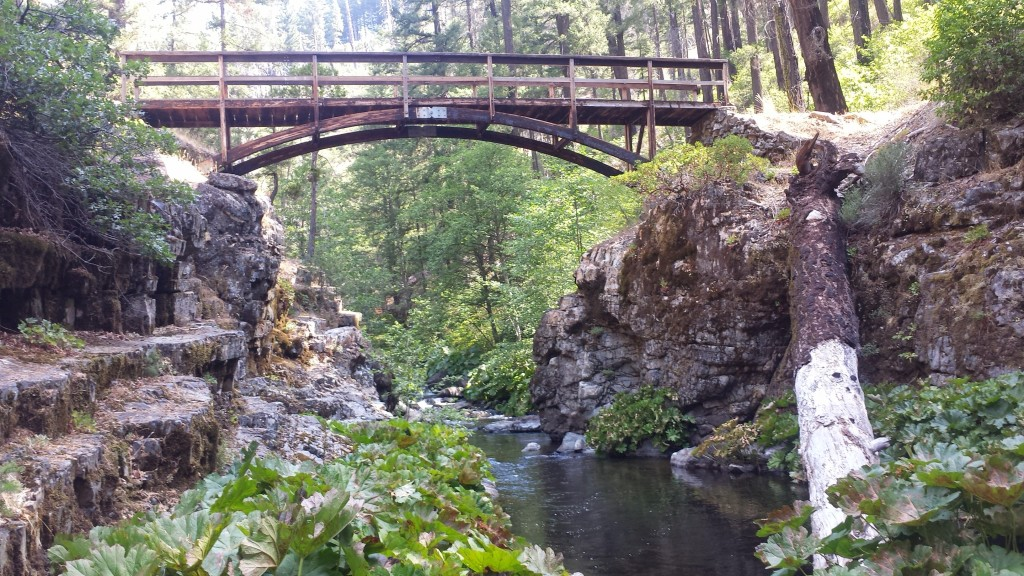 PCT Section O Shasta Trinity National Forest Squaw Valley Creek footbridge