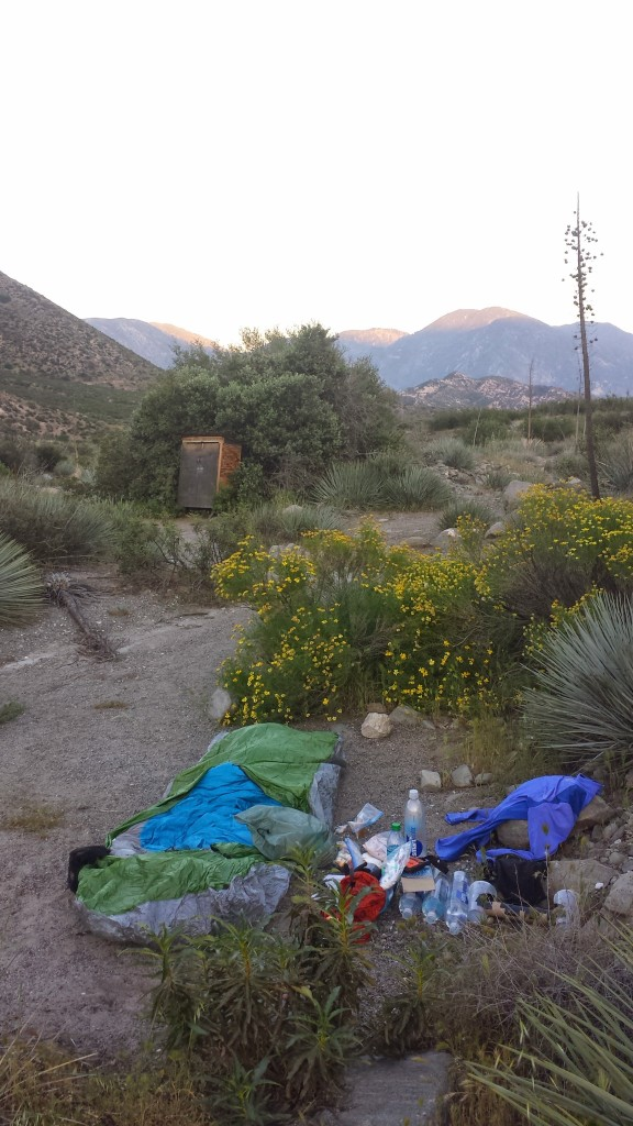 Campsite near Swarthout Road