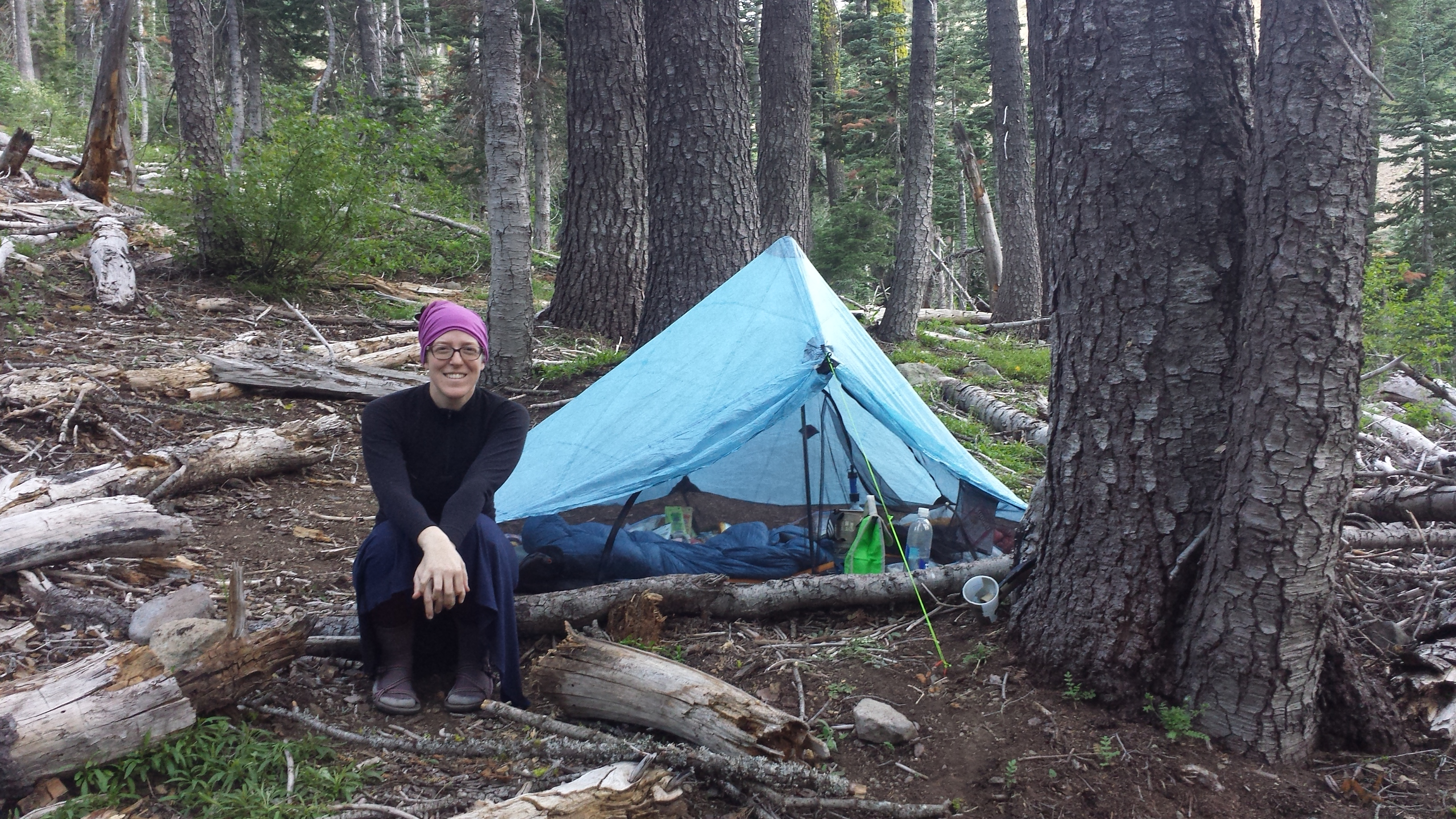 My Zpacks Hexamid Solo Tent & Sierra City to Belden June 2015 u2013 A Skirt In The Dirt