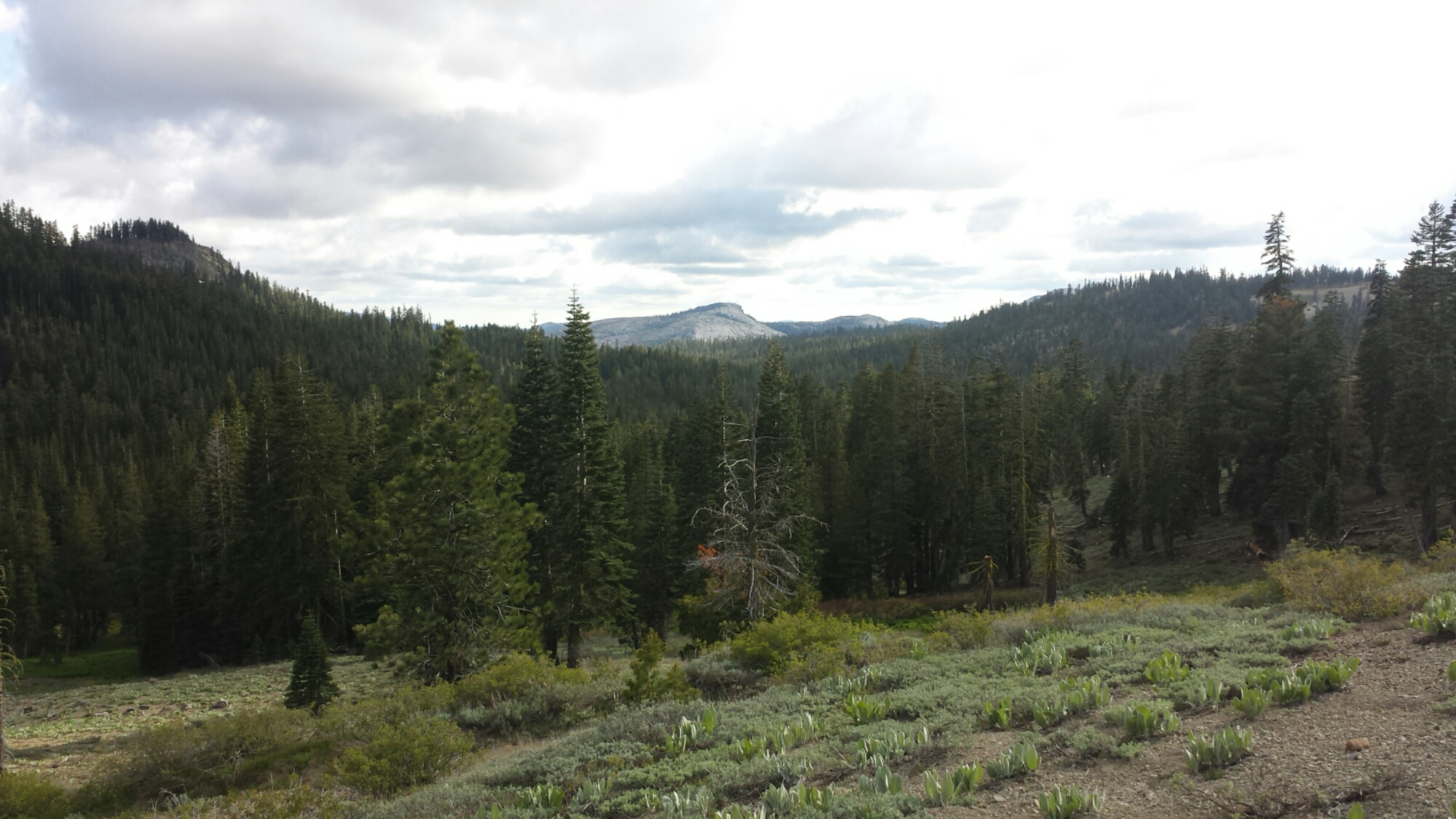 View from Barker Pass